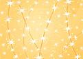 Twinkle Lights Gold - Back