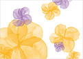 Floral Watercolor Reception - Back