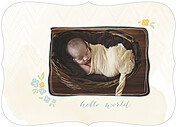 Casual Floral Blue Ornate Birth Announcements Flat Cards - Front