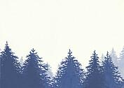 Forest Landscape RSVP Navy RSVP Flat Cards - Back