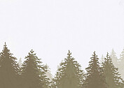 Forest Landscape RSVP Neutral RSVP Flat Cards - Back