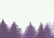 Forest Landscape RSVP Purple - Back