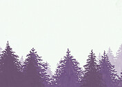 Forest Landscape Thanks Purple - Back