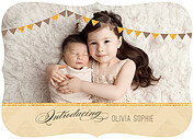 Shimmer Banner Tan Ornate Birth Announcements Flat Cards - Front