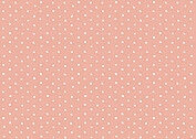 Swiss Dot RSVP Coral RSVP Flat Cards - Back