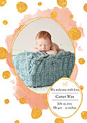 Watercolor Shimmer Salamandor Orange Birth Announcements Flat Cards - Front