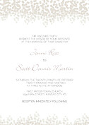 Dazzling Invitation Gray Wedding Invites Flat Cards - Front