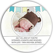 Lovely Welcome Teal Circle Birth Announcements Flat Cards - Back