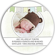 Lovely Welcome Mint Circle Birth Announcements Flat Cards - Back