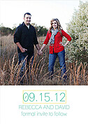 Color Pop Date  Save the Date Flat Cards - Back