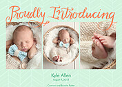 Proudly Introducing Sea Green Birth Announcements Magnets - Front