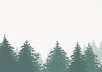 Forest Landscape RSVP Green RSVP Flat Cards - Back