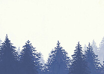 Forest Landscape Thanks Navy Thank You Cards - Back