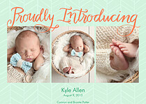 Proudly Introducing Sea Green Birth Announcements Flat Cards - Front