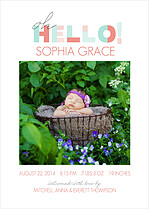 Beautiful Beginning Pink Birth Announcements Flat Cards - Front