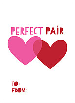 Perfect Pair Valentine's Day Flat Cards - Front