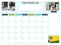 Stripes Aqua Dry Erase Calendars Dry Erase Calendar - Front