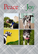 Peace and Joy Plaid - Front