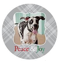 Peace & Joy - Front