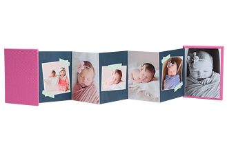 Sticky Sprout Pink Baby & Kids Accordion Minis - Back
