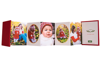 Joyful Montage Holiday Accordion Minis - Back