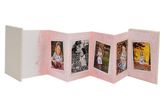 Damask Chic Pink Graduation Accordion Minis - Back